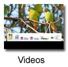 Wooland videos
