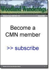 Woodland Wanderings