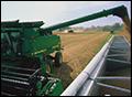 Agriculture...changing landscapes